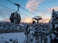 Ski season transfer driver jobs - Courchevel France Alps. Competitive salary.