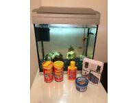 Fish, tank, food, filter, books