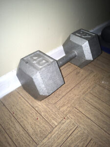 One 40 lbs Hex Dumbbell
