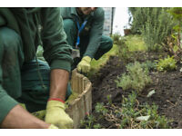 Landscape Partnership Opportunity in Manchester - Apply Now!