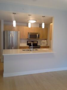 Fairly large and clean apartment available. Mainly furnished