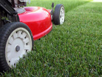 Lawn mowing, weed removal, heavy lifting, landscaping