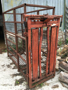 Portable Cattle Chute and Headgate