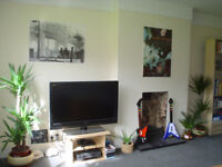 Friendly flatshare very close to East finchely tube- available 24th August - call now to view :-)