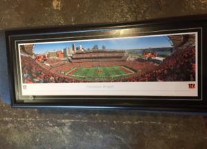 Cincinnati Bengals Framed Panotamic Picture- Paul Brown Stadium