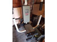 Weider Sparring System