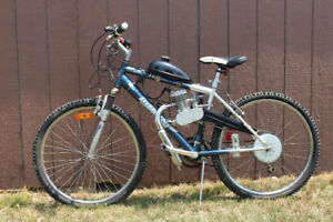 Gas Power Assisted Bike