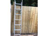 Horizon 3 way ladder