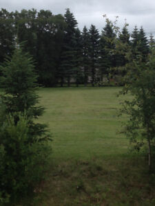 2 Ready to Build on Lots for Sale in Woodlands, MB.
