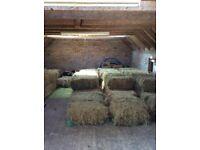 Mini hay bales £3 each