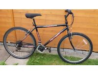 2 x Adult mountain bikes. £20 for both.