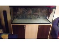 Fish tank Fluval 240l,extras like cabinet and two external filters