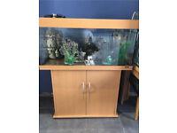 Juwel 3.5 ft fish tank