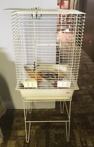 Living World Deluxe Cockatiel Cage for sale
