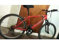 Apollo bike for sale