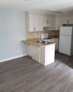 Rent a 1 bedroom newly renovated suite