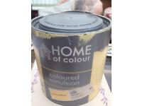 Silk Emulsion Paint - Yellow