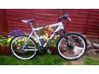 Giant xtc 4 mountain bike