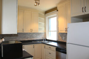 3 Bedroom Apartment close to Downtown & Glebe