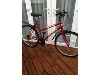 Ladies/Girls Krystal Pro Adult Mountain Bike