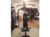 Everlast Multi-gym Ev1100 with 40kg weights