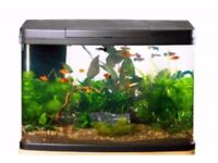 64L Fish Tank. Nearly New. 7 Months Warranty