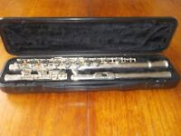 Flute Stagg 77-F. Silver, virtually new. Excellent condition with lovely black hard case.