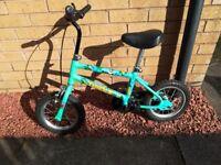 Immaculate Unisex Kids Bike