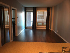 Downtown SASSO 1Bedroom Condo for Rent -available immediately
