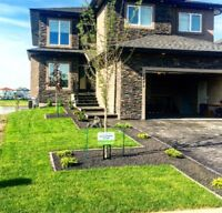 Sod Installation Special: $0.80/Sqft Call Us Now