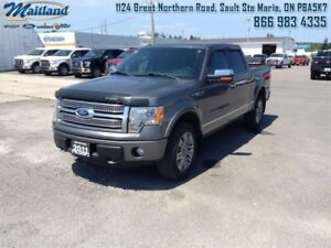 2011 Ford F-150 PLATINUM-LEATHER SEATS-BLUETOOTH-COOLED SEATS-LE