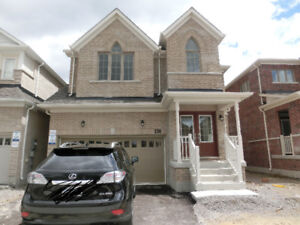 NEW HOUSE in Bradford for Rent