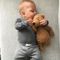 Nanny Wanted - Looking for experienced infant caregiver to care