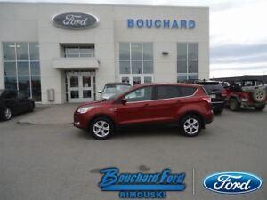 2014 Ford Escape 2.L SE