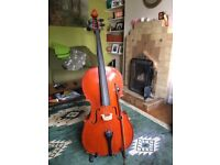 Stentor Student II Cello 4/4 Size