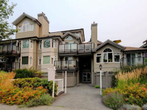 Newly Updated Top Floor Penthouse Unit in Vancouver