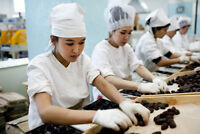 AMAZING CHOCOLATE FACTORY PRODUCTION ASSOCIATE JOBS!