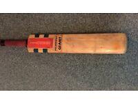 Gray Nicholls POWERSPOT GIANT bat