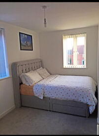 Large Double Bedroom in Costessey NR8