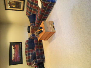 love seat and couch  New condition