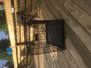 Cage moyen chien