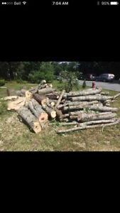 Wanted free hard wood  for wood stove will pick up firewood fire