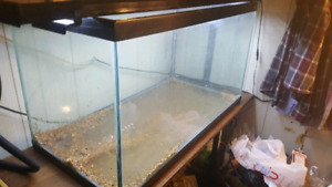 Hagen 50 gallon tank with home made lid