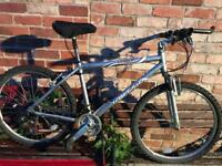 Raleigh tundra mountain bike