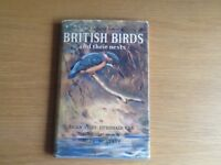 A Ladybird Senior British Birds and their nests Series 536
