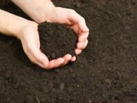 Organic Top Soil Screened