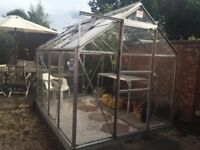 A.G.L Greenhouse for sale - measuring 8ft by 6ft