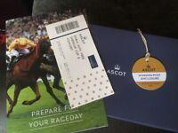 Ascot Dubai cup ticket
