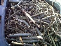 Kindling - Ideal for Wood Burner, Chiminea etc..