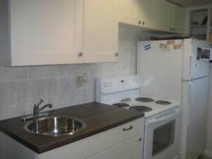 Great Location Nr Downtown and U of A Self-contained Bsmt Suite